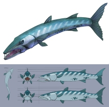 Fish concept / model packet